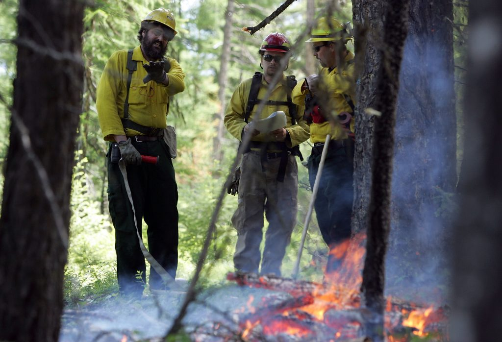 Bipartisan members of Congress launch 'Wildfire Caucus'