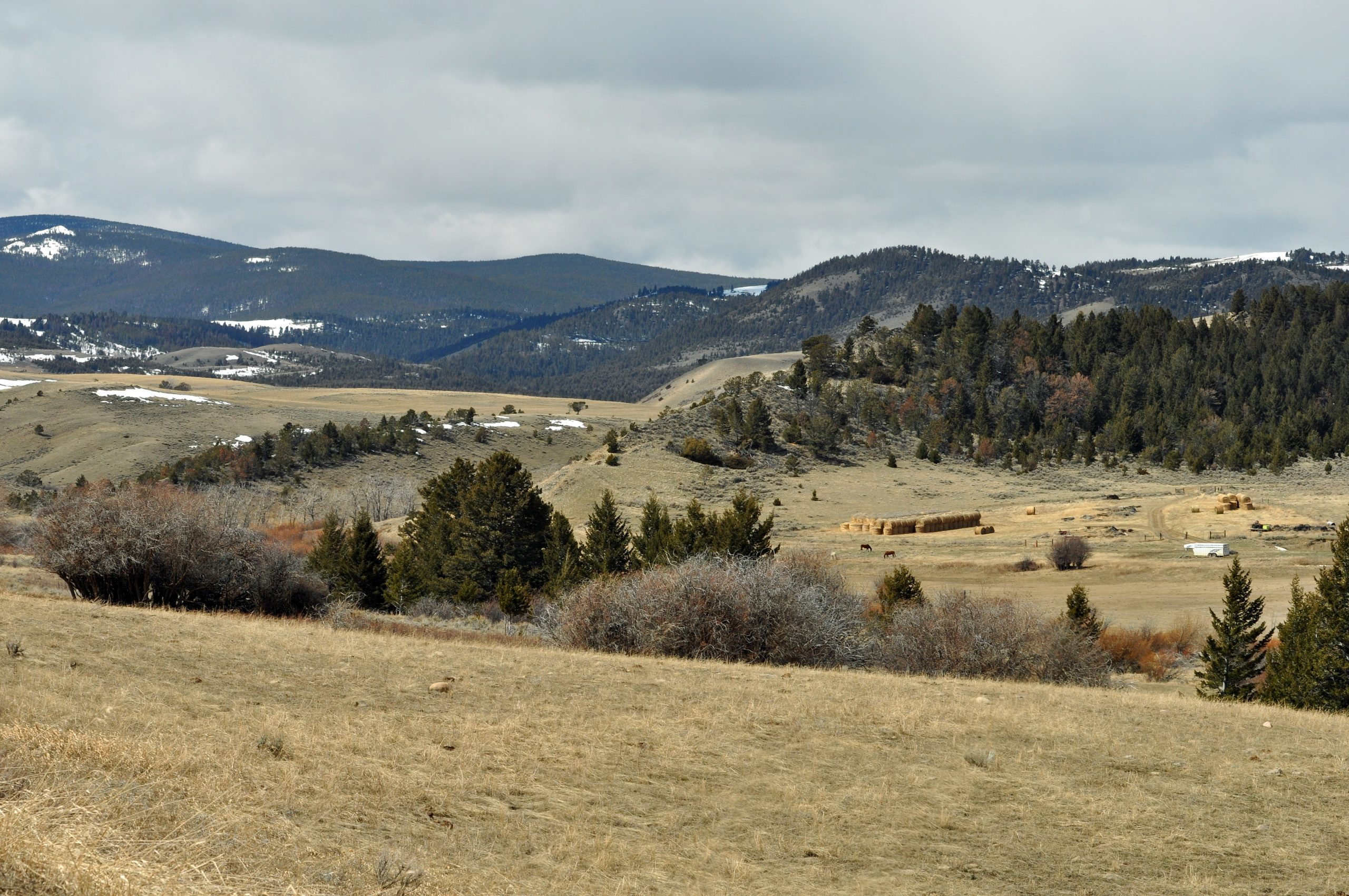 Conservation groups try to keep Castle Mountains pristine