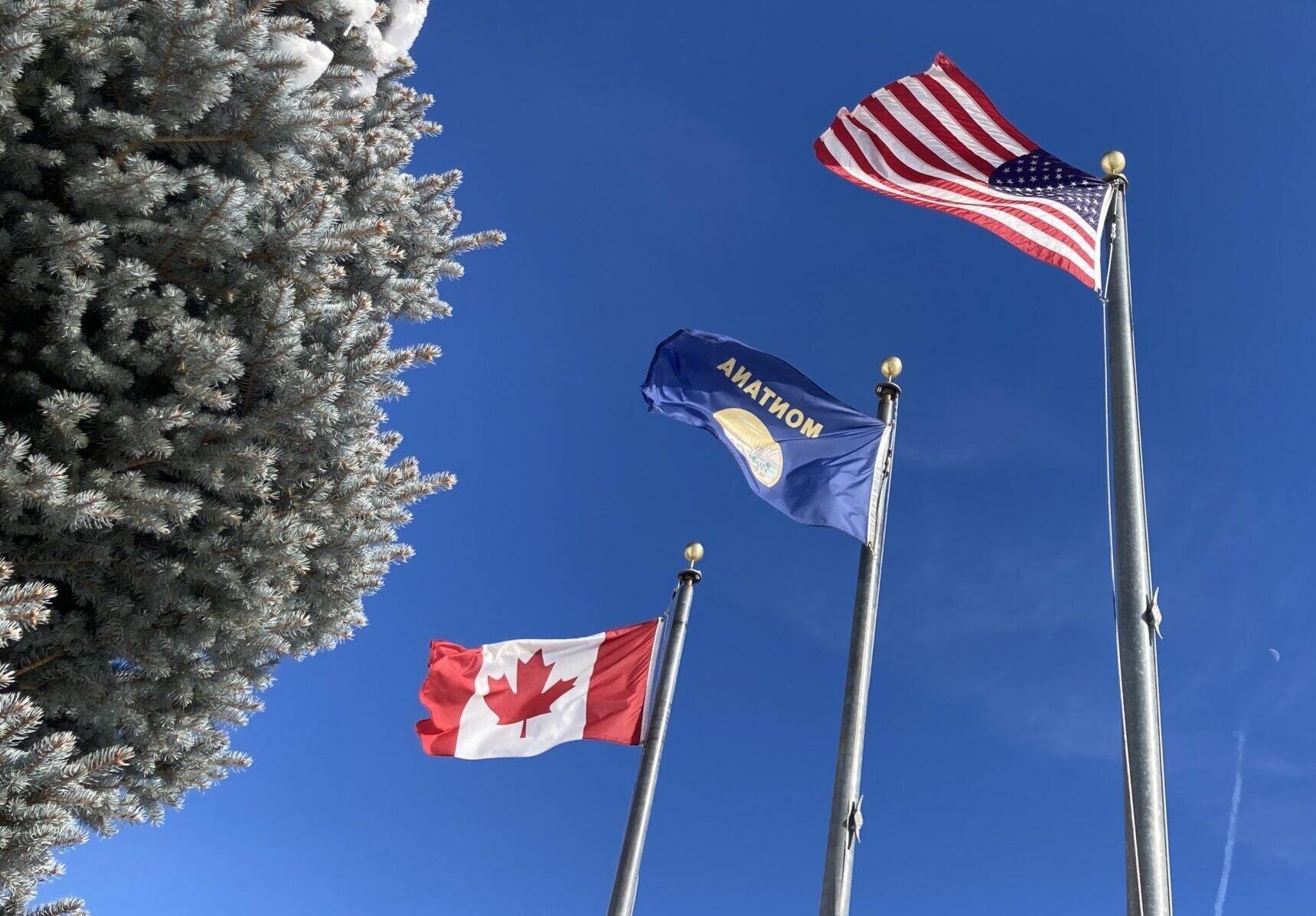 Montana flag uses 'seal-on-a-bedsheet formula'