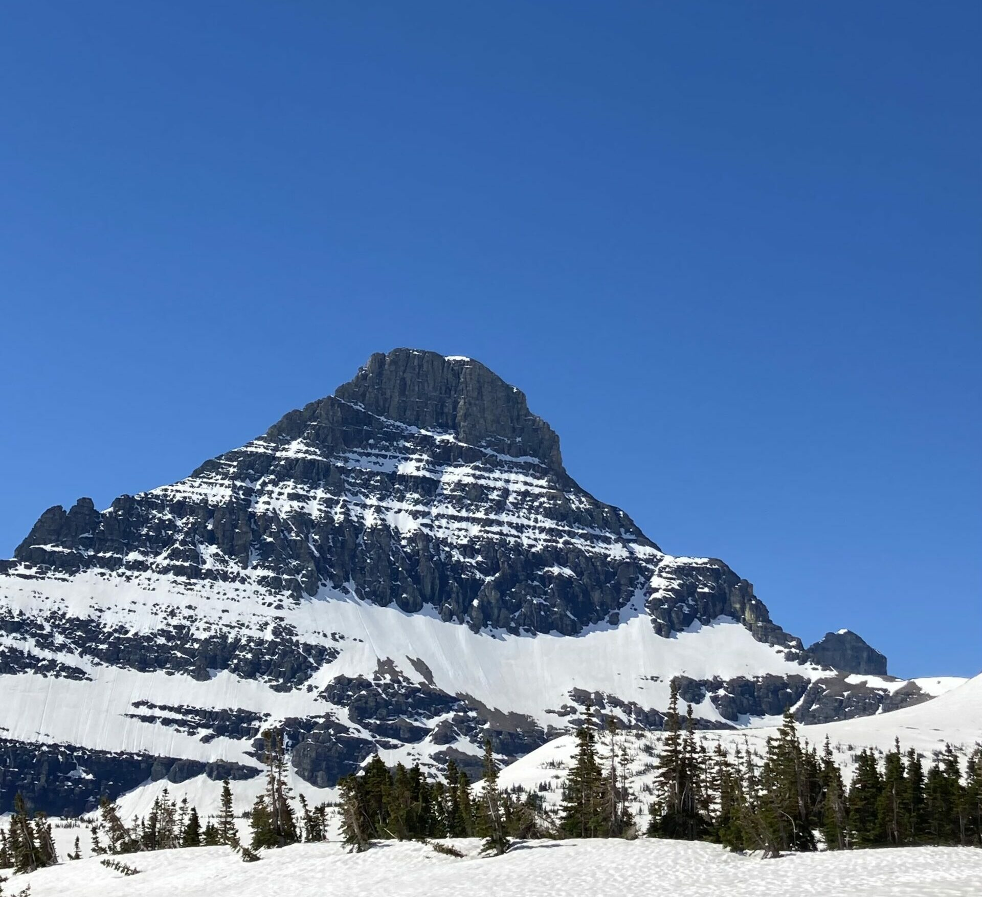 Glacier's Going-to-the-Sun Road opens